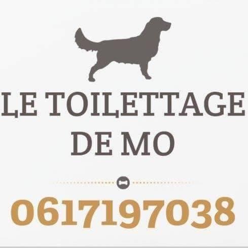 LE TOILETTAGE DE MO