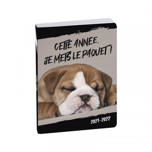 Agenda scolaire 2021 2022 funny pets chien exacompta 12 x 17 cm
