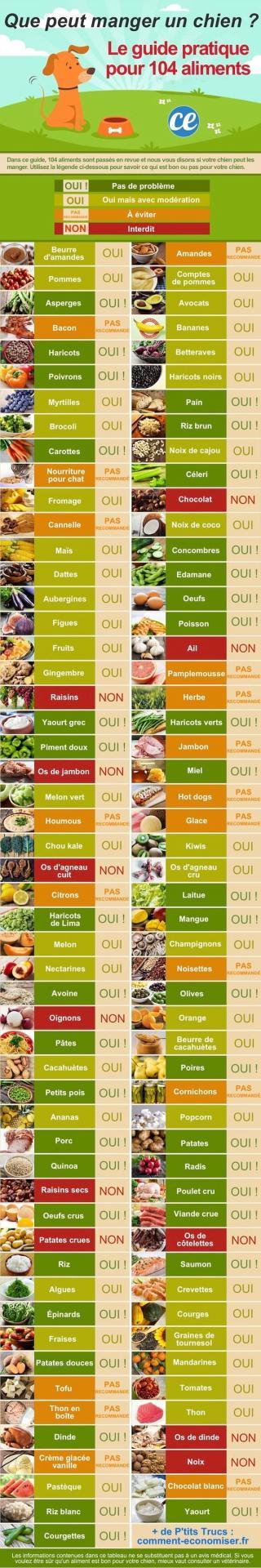Quels sont les aliments que peut manger un chien le guide pratique pour de 100 aliments